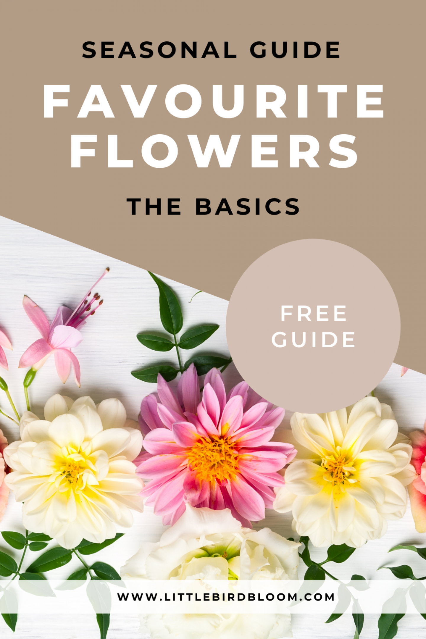 free guide to flowers