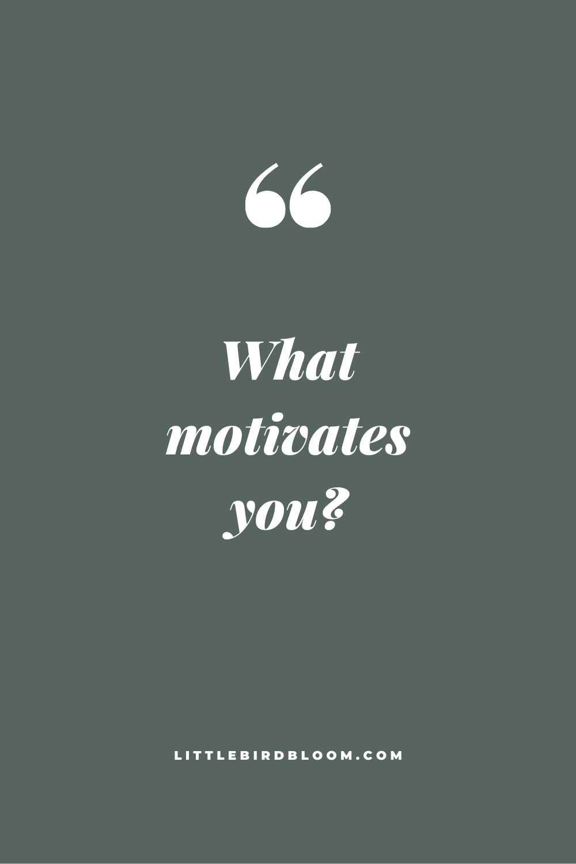 blog post little bird bloom motivation flowers and business